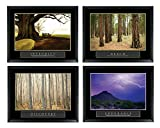 Set of 4 Framed Motivational Posters Bundle Landscape Integrity Reach Discovery Endurance 22x28 Inches Complete Office Decor