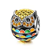 NinaQueen 925 Sterling Silver Owl Animal Bead Charm Gold Plated Multicolor Enamel Charms for Pandöra Bracelets Birthday Anniversary Necklace Jewelry Gifts for Her Teen Girls Kids Sisters Daughter