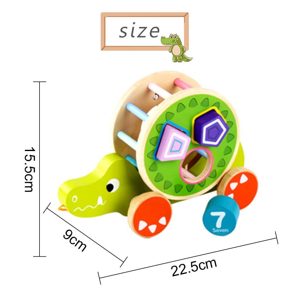 LAANCOO Enfants Tirer Le Long Jouet Dessin Anim/é Crocodile en Bois /Éducation Infantile Classificateur de Forme Jouet /à Tirer
