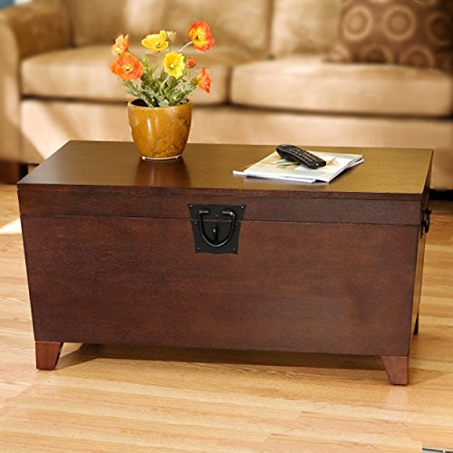 Southern Enterprises Pyramid Storage Trunk Cocktail Table, Espresso Finish
