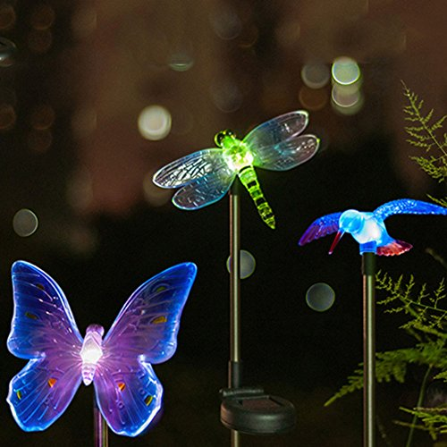 Chameleon Solar Lights in Florida - 7