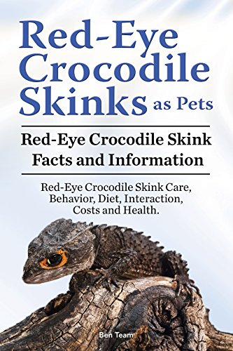 Red Eyed Crocodile Skink Care