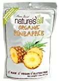 Natures All Pineapple Frz Drd Raw Org