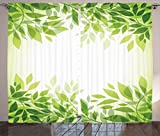 Ambesonne Leaves Decor Collection, Modern Style Print Frame of Tree Leaves Branches Feng Shui Home Office Illustration, Living Room Bedroom Curtain 2 Panels Set, 108X90 Inches, Green Yellow