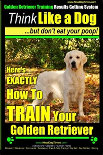 Golden Retriever Training Results Getting System Think Like A