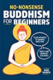 #2: No-Nonsense Buddhism for Beginners: Clear Answers to Burning Questions About Core Buddhist Teachings