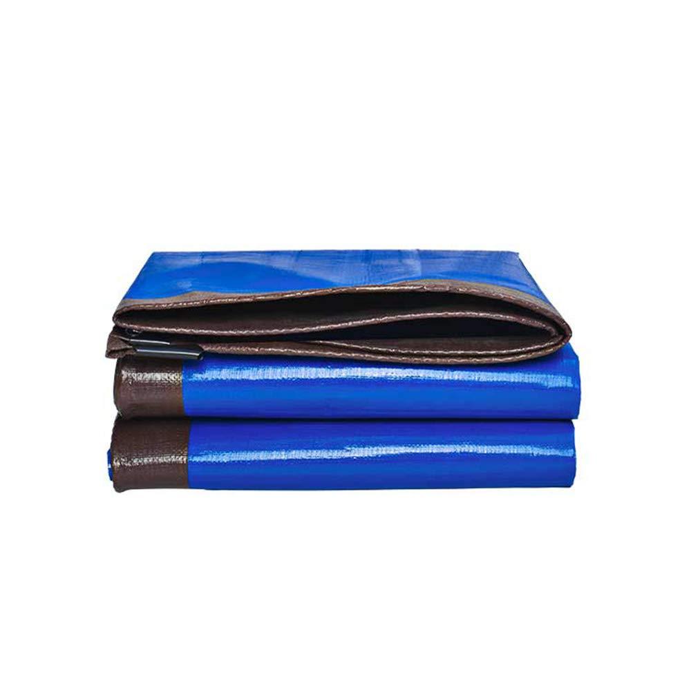 防水シート、屋外用厚手220g防水布、自動車トラック防水サンシェード断熱ターポリン、プラスチックキャノピー布(21サイズ) B07TBM781B  10×10m