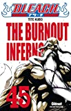 bleach t.45 .; the burnout inferno