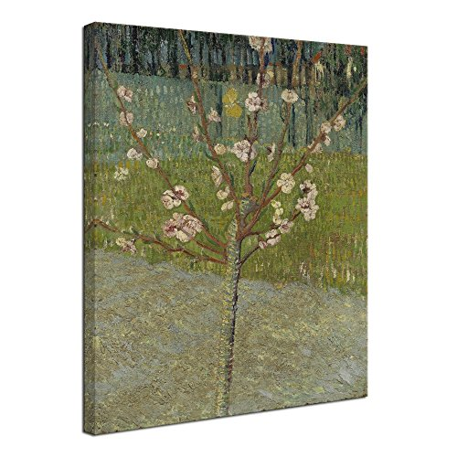 Wieco Art Almond Tree in Blossom by Van Gogh Famous Oil Paintings Reproduction Classic Canvas Prints Wall Art Abstract Flowers Pictures for Home Decor Modern Stretched and Framed Landscape Artwork