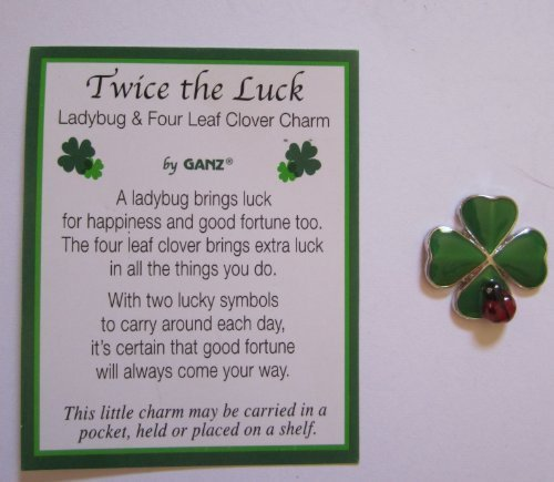 1 Ganz Twice the Luck Clover and Lady Bug Charm