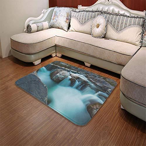 (YOLIYANA Water Absorption Non-Slip Mat,Landscape,for Corridor Study Room Bathroom,55.12