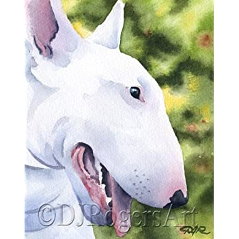 Amazoncom Rat Terrier Dog Art Print Signed By Artist DJ Rogers - Bull terrier art