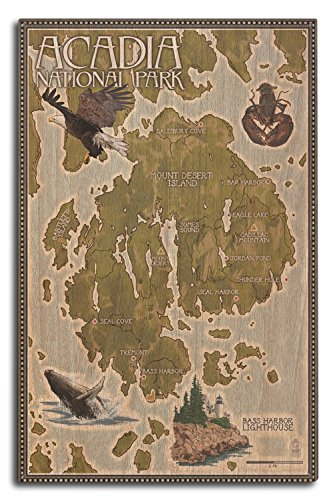 Lantern Press Acadia National Park, Maine - Map (10x15 Wood Wall Sign, Wall Decor Ready to Hang)