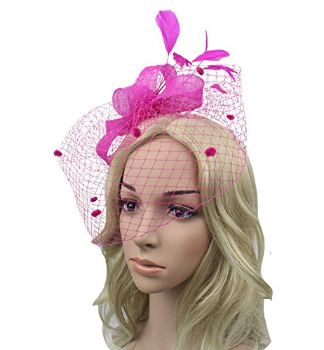 Urban CoCo Women's Bow Feather Net and Veil Fascinator Cocktail Party Hair Clip Hat (Rose)