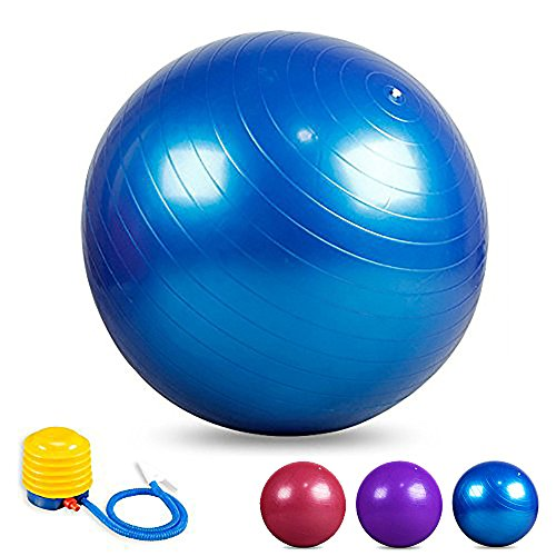 Rams Bro 2000lbs Best Yoga Ball Home Gym Fitness Ball CrossFit Weight Loss training Swiss Balance Training Static Core Strength Exercise Anti Burst Stability Ball with Air Pump (55cm/65cm/75cm)