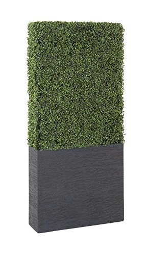 Deco 79 50861 Pe Boxwood Hedge, 22