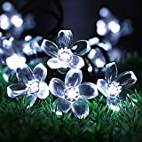 PeterIvan Solar String Lights - 20ft 50 LED Waterproof Solar Garden Lights for Indoor & Outdoor Decoration, Solar Powered Blossom Flowers String Lights for Garden and Patio (White)
