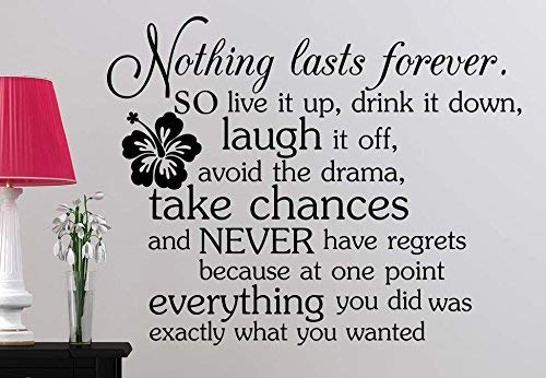 LilithCroft99 Nothing Lasts Forever So Live It Up Drink It Down Laugh It Off Avoid The Drama Vinyl Wall Art Saying Lettering Motivational Inspirational Sign Room Decor