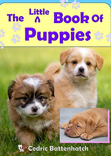 The Little Book Of Puppies Cute Rhyming Animal Books For Kids