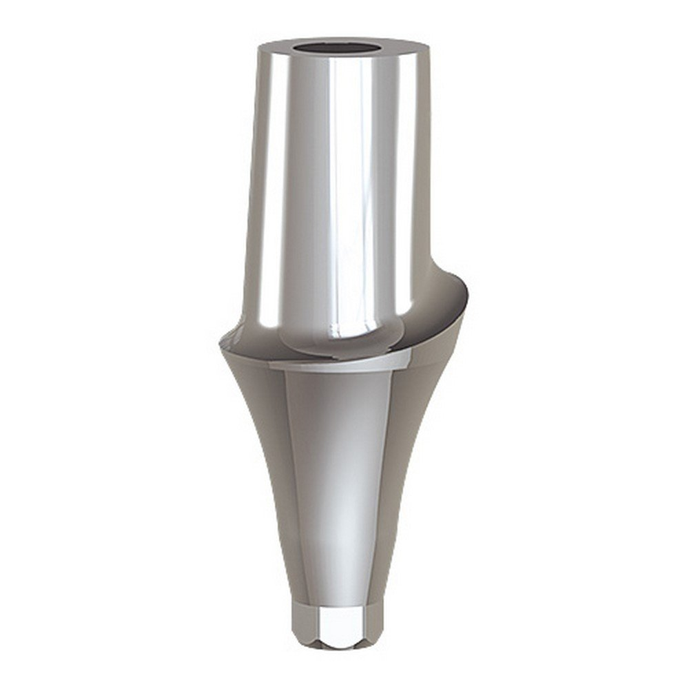 Paltop 40-72065 Conical 5 mm Straight Anatomic Abutment Ti, Concave, 6 mm Diameter