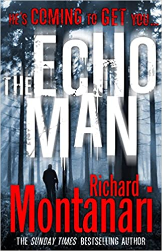 Image result for the echo man montanari