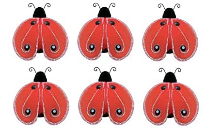 Amazon.com: Ladybug Decor 2