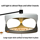 Yc Sticky Flea Trap Indoor Plug-in,Dome Flea Bed Bug Trap with 2 Glue Discs,Odorless Non-poisonous Natural Family, Children and Pets Friendly