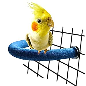 RYPET Parrot Perch Rough-surfaced - Quartz Sands Bird Cage Perches for Small Parakeets Cockatiels, Conures, Macaws, Parrots, Love Birds, Finches Cages Toy, U Shape 22
