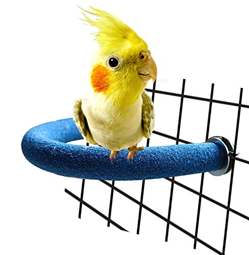 RYPET Parrot Perch Rough-surfaced - Quartz Sands Bird Cage Perches for Small Parakeets Cockatiels, Conures, Macaws, Parrots, Love Birds, Finches Cages Toy, U Shape ()