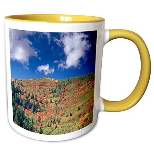 3dRose Danita Delimont - Autumn - Autumn, Kimball Junction, Park City, Utah, USA - US45 HGA0425 - Howie Garber - 11oz Two-Tone Yellow Mug - Utah Park Outlets City