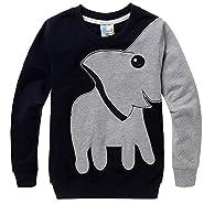 Little Hand Little Boys Lucky Elephant Print Long Sleeve T-Shirt