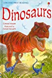 Dinosaurs (Usborne First Reading: Level 3)