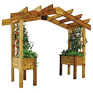Gronomics PP2 18-34 3-Feet by 10-Feet by 8-Feet Pergola Planter, Unfinished