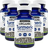 Stonehenge Health Organic Turmeric Maximum Strength 95% Curcumin with BioPerine® for Added Absorption - Anti-Inflammatory, Pain Reducer, Arthritis Support - 1,010 mg Daily dose (6 Pack)