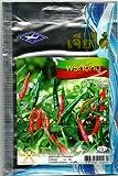 Thai Hot Pepper Seeds Fruit Vegetable - 90 Seeds