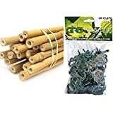 Hydrofarm Hgbb6 6 39 Natural Bamboo Stake Pack Of 25 Garden Stakes Patio Lawn