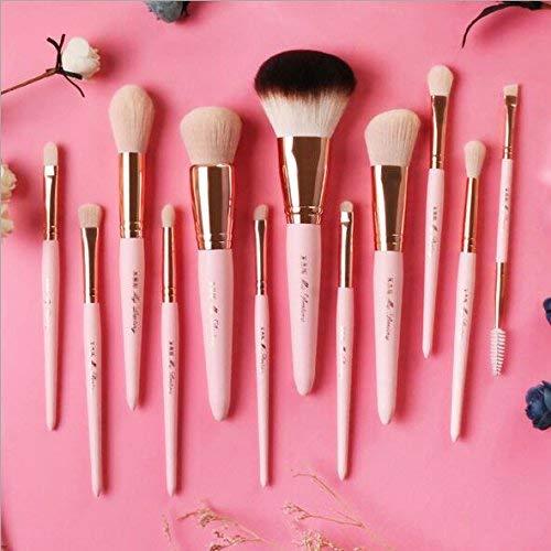 Anne's Giverny 12pcs Professional Synthetic Kabuki Makeup Brush Set with Case - Powder,Eyeshadow,Eyebrow,Eye Lash,Contour & Foundation Make Up Brushes of beatuiful gift ()