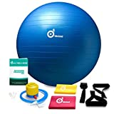 2000lbs Anti-Burst Exercise Stability Ball with 2 Sets Resistance Loop Bands,Pack w/ Pump/Door Anchor and Handles for Yogo,Fitness,Rehabilitation Workout