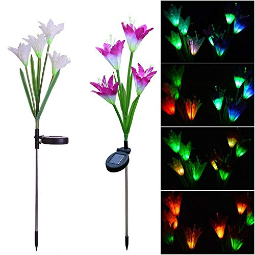 Multi Color Led Landscape Lighting in US - 9