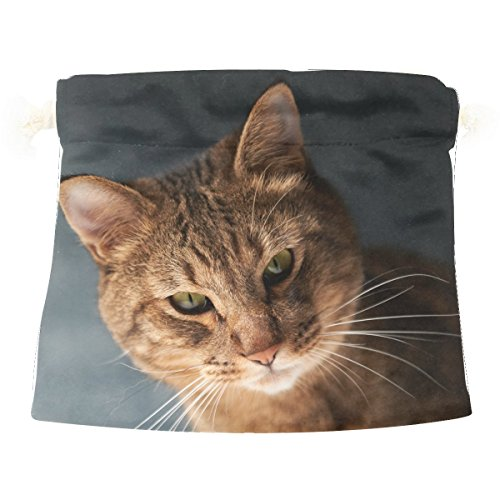 Cat Face Fat Look Cute Colorful Candy Gift Present Wrap Drawstring (Draw A Cat Face For Halloween)