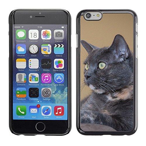 """Hülle Case Schutzhülle Cover Premium Case // F00000176 Rouge // Apple iPhone 6 6S 6G 4.7"""""""