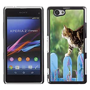 Qstar Arte & diseño plástico duro Fundas Cover Cubre Hard Case Cover para Sony Xperia Z1 Compact / Z1 Mini / D5503 ( Cat Fence Cute Pet Nature Home Green)