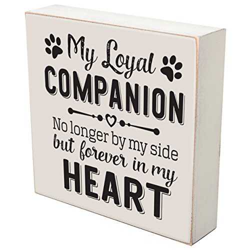 My Loyal Companion No Longer By My Side loss of pet dog cat memorial gift keepsake shadow box 6x6 by LifeSong Milestones (My Loyal (Forever Heart Box)
