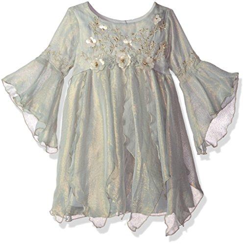 Biscotti Big Girls' Modern Maiden Chiffon Dress with Embroidery, Blue, 14 by Biscotti