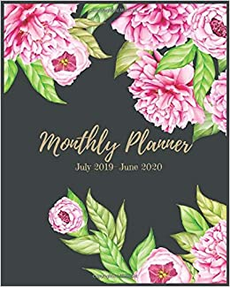 Amazon.com: Monthly Planner July 2019- June 2020: Pink ...