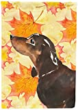 Cheap Caroline's Treasures BB9510GF Black and Tan Dachshund Fall Decorative Garden Flag, Multicolor