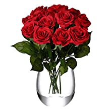 Feyarl 12-Piece 17.4 inch Premium Material Real Touch Artificial Flowers Roses for Wedding Party Home Decorations (Vase is not included) - Red