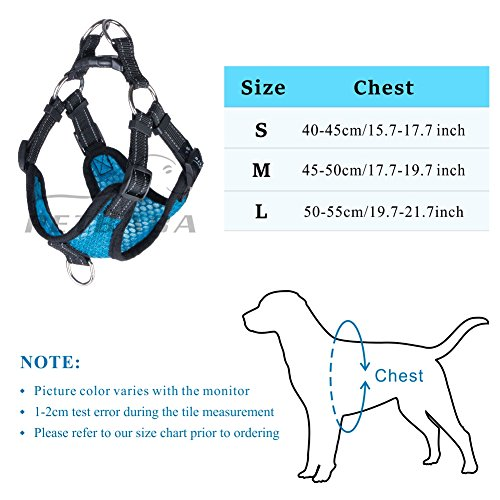Front Clip Dog Harness Small Dogs