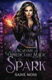 Spark: A Reverse Harem Series (Academy of Unpredictable Magic)