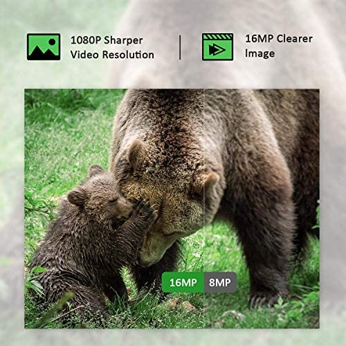 "【2020 Upgrade】 Campark Mini Trail Camera 16MP 1080P HD Game Camera Waterproof Wildlife Scouting Hunting Cam with 120° Wide Angle Lens and Night Vision 2.0"" LCD IR LEDs 51Tx 2B4Iv2PL"